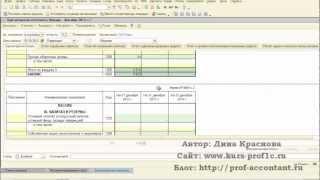 Бухгалтерская отчетность 2012 (отрывок из курса)