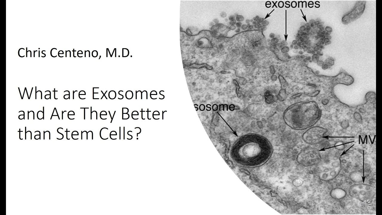 Stem Cell Therapy maxresdefault - Let's Talk Stem Cells Part 4: Hijacking Other Cells