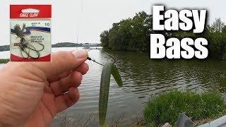 Easy Bass Fishing for ANYONE - Affordable Fishing for Beginners