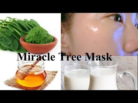mp4 Beauty Moringa, download Beauty Moringa video klip Beauty Moringa