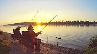 Отдых и рыбалка на волге в костромской области