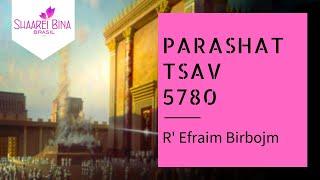 Parashat Tsav 5780