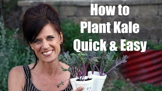 How to Plant Kale and Why to Plant it - Quick and Easy!