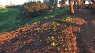 Frank G Bonelli Park Puddingstone Lake reservoir La Verne San Dimas Part 4