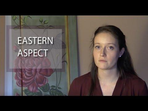 The Eastern aspects of Sahaja