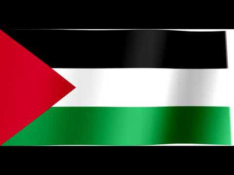 Israel-Palestine 2021 conflict explained by Israeli Communist