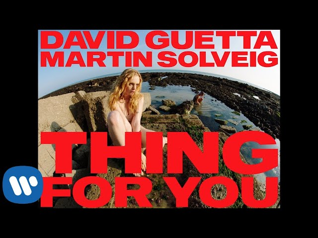 Thing For You  - DAVID GUETTA