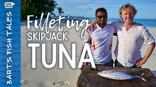 How to fillet a skipjack TUNA | Bart van Olphen