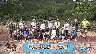 バラで彩ろう!「近江富士バラ園友の会」滋賀県立 近江富士花緑公園