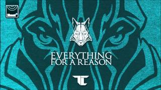 TC - Everything For A Reason (Silverback Remix)