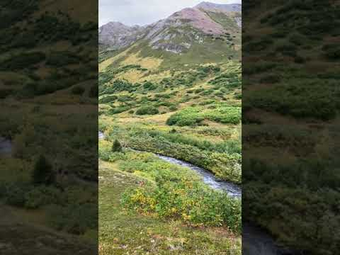 Video Of Hope Alaska Backcountry Sites, AK