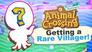 Finding a RARE Villager in Animal Crossing New Horizons
