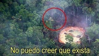 En esta Selva se Esconde el INSECTO más Extraño del Planeta (Dicen que es EXTRATERRESTRE)
