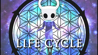 The Life Cycle of a Hollow Knight Fan