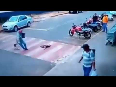 """Homem cai ao ser """"atropelado"""" por cães"""
