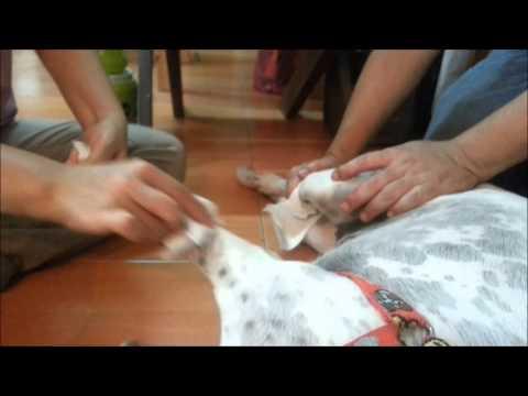 นวดวิดีโอที่มีเท้า valgus