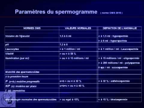 Schlecht differenzierten Adenokarzinom der Prostata Prognose