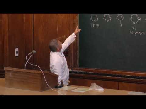 Зык Н. В. - Биоорганическая химия II - Гетероциклические соединения