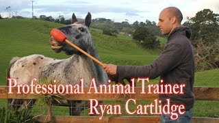 Train Any Animal or Pet | Guest Animal Trainer Ryan