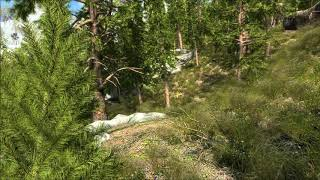 Skyrim VR Realistic Forests and Lighting Guide (skyrimVR graphic mods)