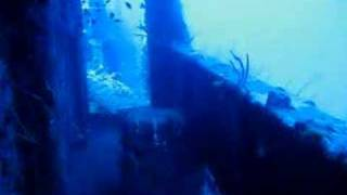 preview picture of video 'Dive St. George Wreck at Bayahibe DR (3)'