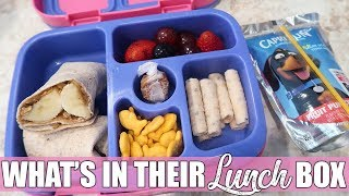 What My Kids Took for Lunch   Back to School Lunch Box Ideas   August 2019