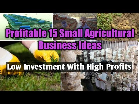 , title : 'Profitable 15 Small Agricultural Business Ideas - Low Investment With High Profit