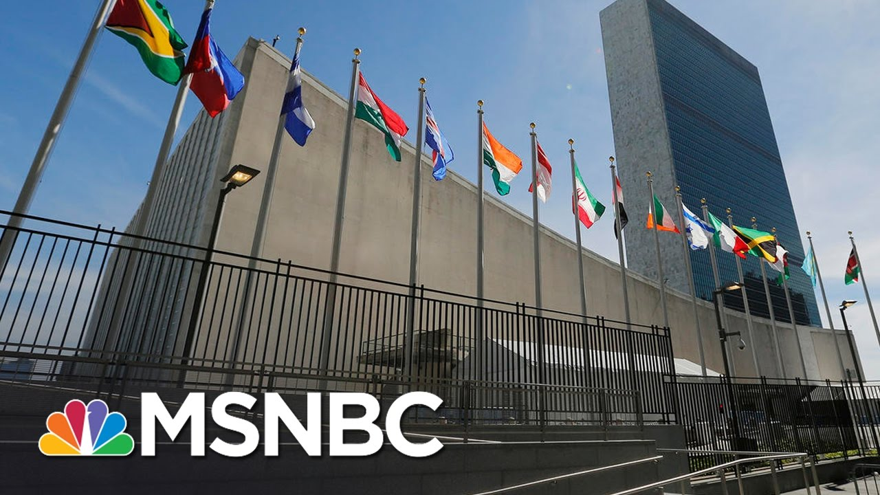 United Nations Delays Vote On Israel Resolution | Andrea Mitchell | MSNBC thumbnail