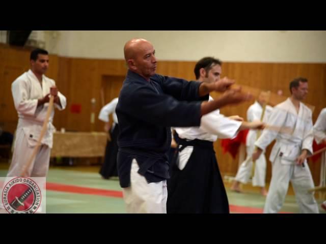 Aikido Seminar 2016
