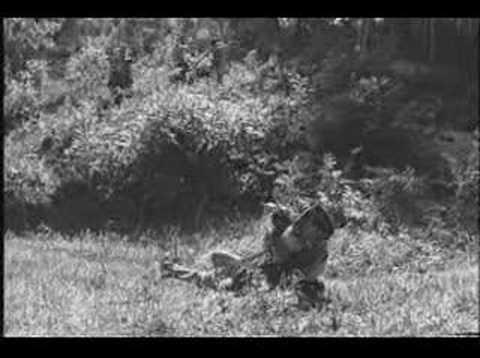 Hatework Halocaust Video