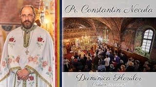 Parintele Constantin Necula - Predica In Duminica Floriilor