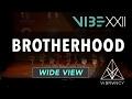 [1st Place] Brotherhood   VIBE XXII 2017 [@VIBRVNCY 4K] #vibedancecomp