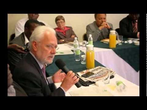 EU chides Zim NGOs, critics | The Herald