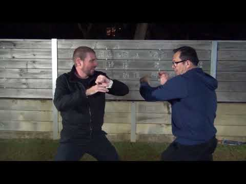 Southern Dragon Kung Fu and Western Boxing (龍形拳, 詠春拳, 拳擊)
