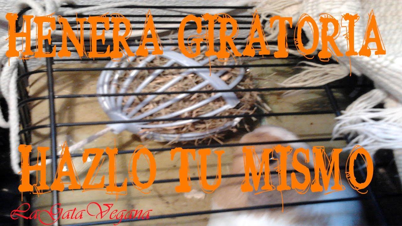 CREA UNA HENERA GIRATORIA PARA ROEDORES Y CONEJOS / HAZLO TÚ MISMO / REUTILIZA PARA CREAR UN JUGUETE