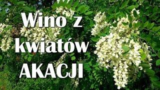 Wino z kwiatów AKACJI - wino kwiatowe.