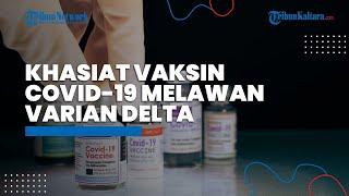 Kemanjuran Vaksin Covid-19 Menurut Peneliti terhadap Virus Corona Varian Delta