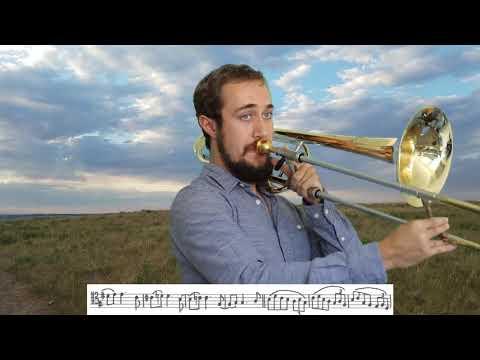 "Variations on ""Dona Nobis Pacem"" by David Fetter"