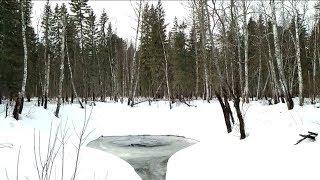 Рыбалка в таёжных реках сибири