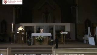 Apr. 11, 2020 - Easter Vigil - Fr. Maxy D'Costa (video)