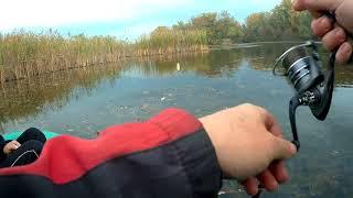 Кубань ру рыбалка на кубани
