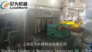 Industrial Case Washing Machine For Boxes Automatic Plastic Crate Basket Cleaning Machine(洗框机)