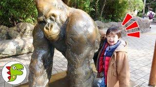 おでかけ上野動物園へ遊びに行ったよ!色んな動物がいたよ!トイキッズ