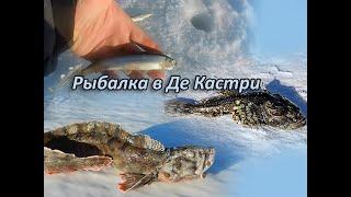 Рыбалка де-кастри хабаровский край 2019
