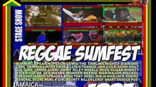REGGAE SUMFEST 1993 LIVE IN JAMAICA BOUNTY KILLER/JIGSY/WAYNE WONDER