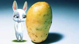 Zoobe Зайка Послала мужа за картошкой (Черный юмор)