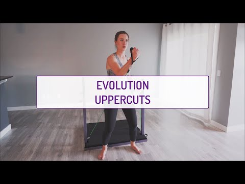 Evolution Uppercuts