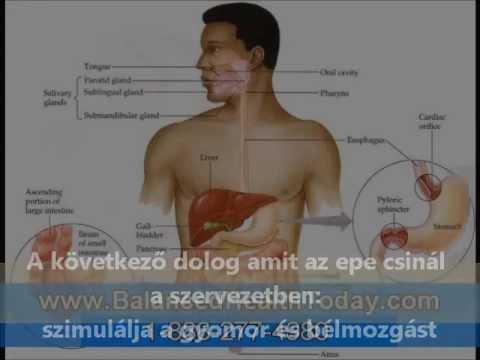 Féreghajtó gyógyszerek felülvizsgálata az emberekről