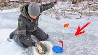 Рыбалка на жерлицы в камышах