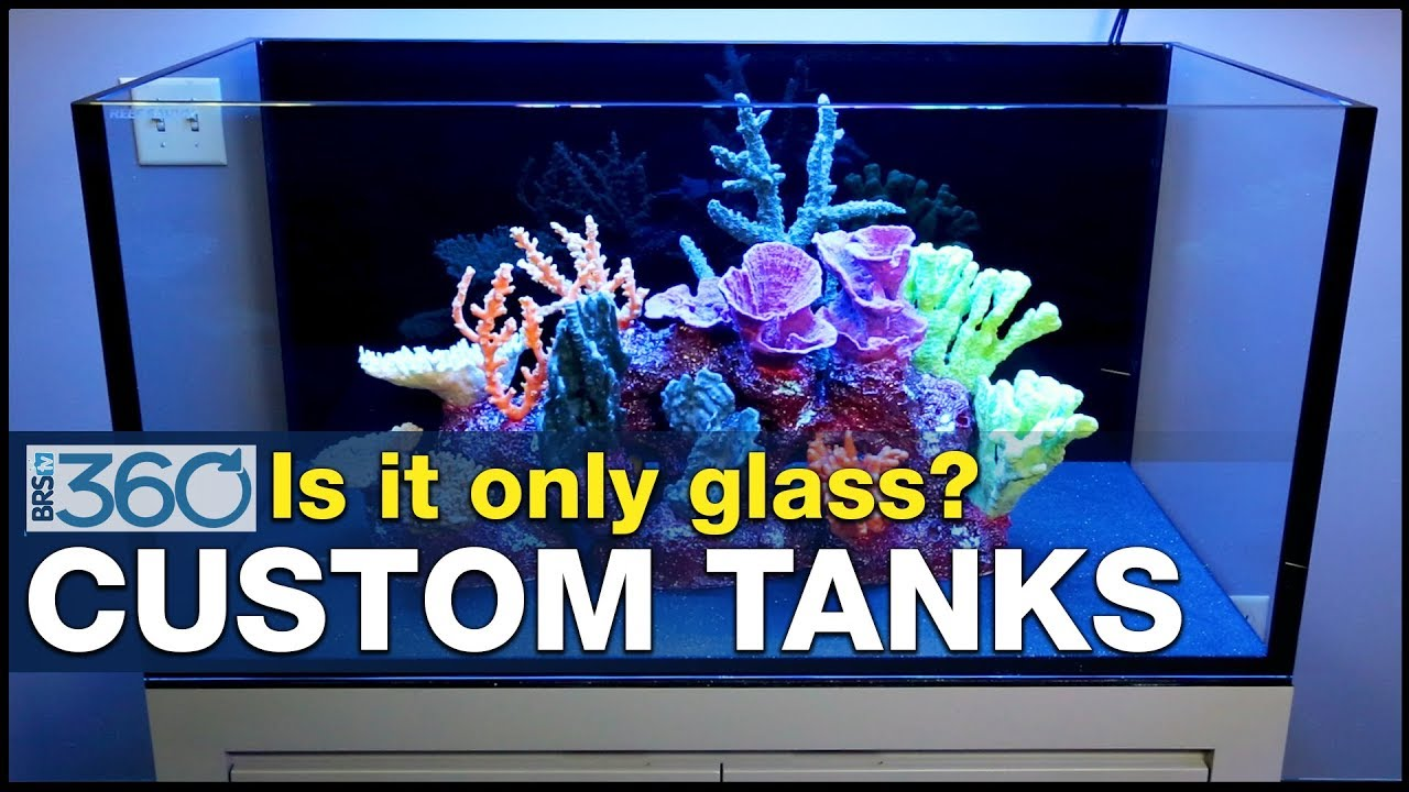 Who is going to build your dream tank? Consider these tank manufacturers. | BRS360